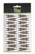 Pro Sportfisher - Pro 3D Shrimp Shell